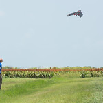 Yeoshua Cohen launches the Ebee-SQ drone during the UAS Field Day, which is revolutionizing the field of precision agriculture.  View more photos: http://bit.ly/AG-UAS